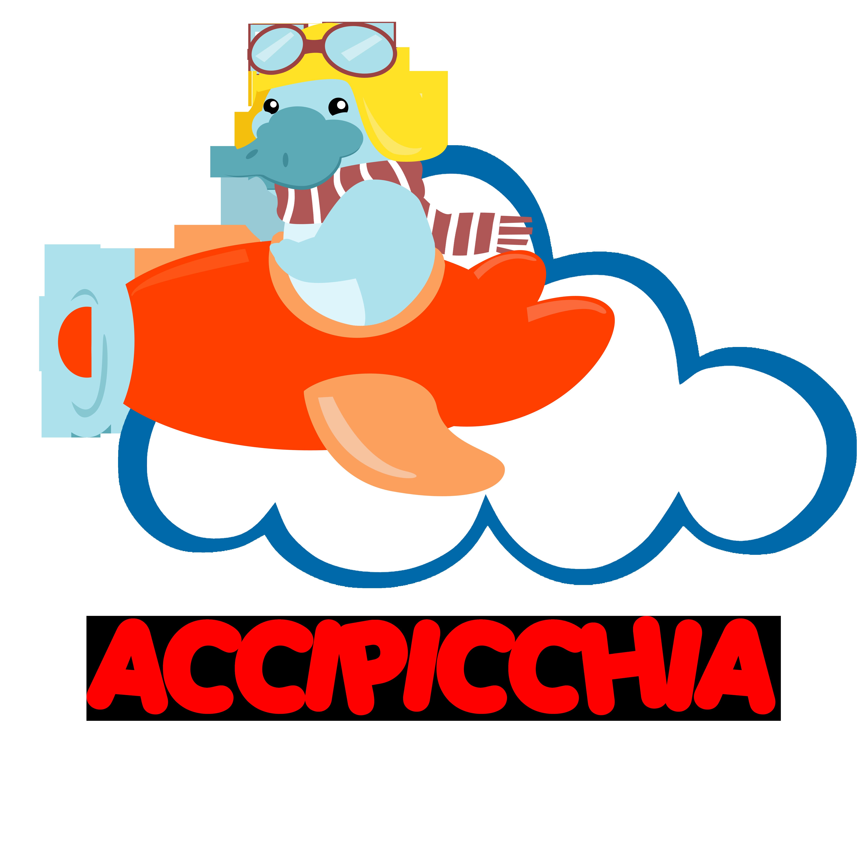 Accipicchia shop